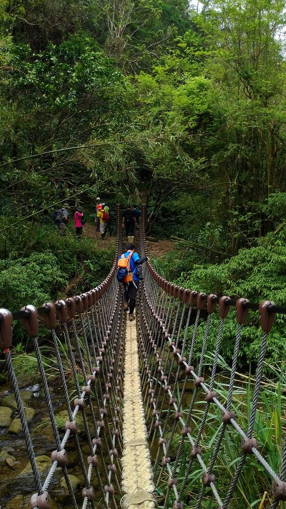 結果竟然又有個獨木橋!