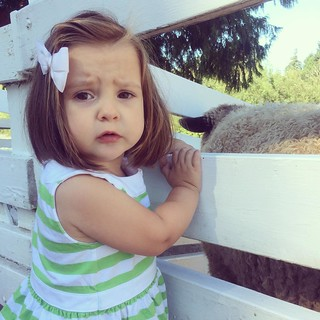 A concerned Maggie encounters a sheep, up close and personal.