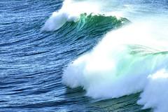 Yamba surf