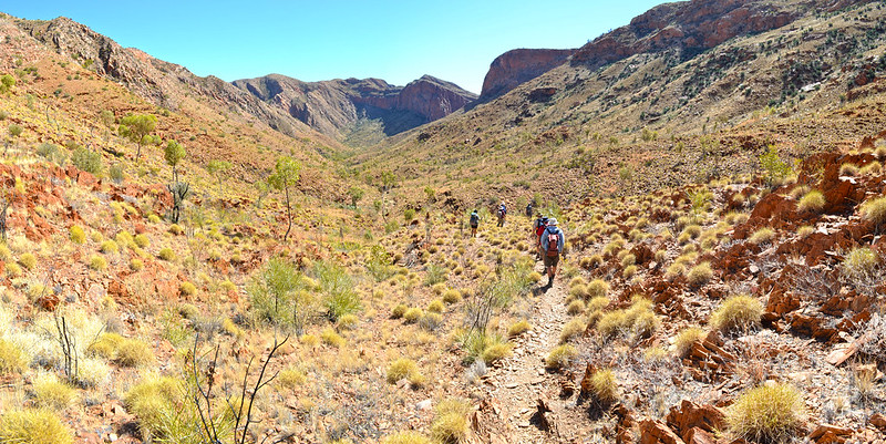 Linear Valley - Larapinta Trail