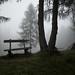 bench & fog @ Parco Naturale Tre Cime di Lavaredo by Toni_V