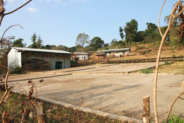 Akmel Nuri Farm
