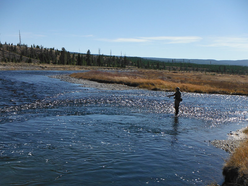 Lou s montana fly fishing trip 2016 the caddis fly for Montana fishing trips