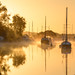 River Frome Wareham by Chris Jones www.chrisjonesphotographer.uk