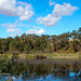 Vacavilles Lake Solano Park by MustangRosie