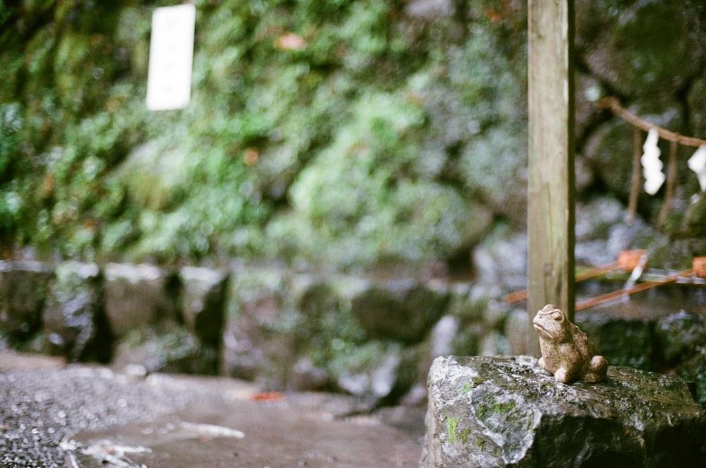 貴船神社 京都 Kyoto 2015/09/24 貴船神社,在顯示水籤的時候要先拜這個青蛙水神。  Nikon FM2 Nikon AI Nikkor 50mm f/1.4S Kodak ColorPlus ISO200 0949-0031 Photo by Toomore