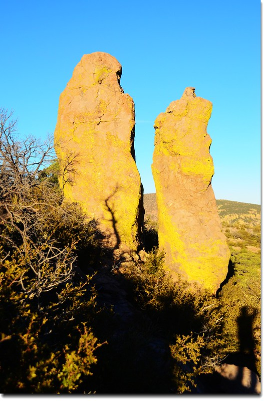 Chiricahua National Monument, AZ (21)