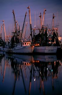Shrimp Boats at Tarpon Springs ii