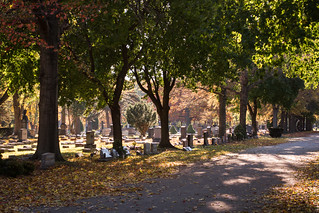 looking S across Sections 10 and 11 - Riverside Cemetery Cleveland | by Tim Evanson