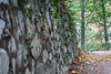 Stone wall - Chantry Flats, Angeles National Forest