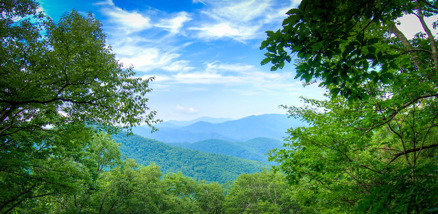 Smoky Mountain View