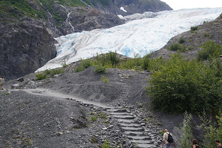 044 Exit Glacier