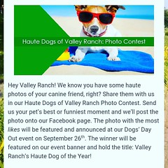 http://blog.valleyranch.org/2015/08/20/woof-all-about-it/  Hey Valley Ranch be sure to submit your canine photos by Friday, September 4! Copy the link or visit our blog for more information. #HauteDogsOfValleyRanch #Dogs #Pups #Canines #Photos #PhotoConte