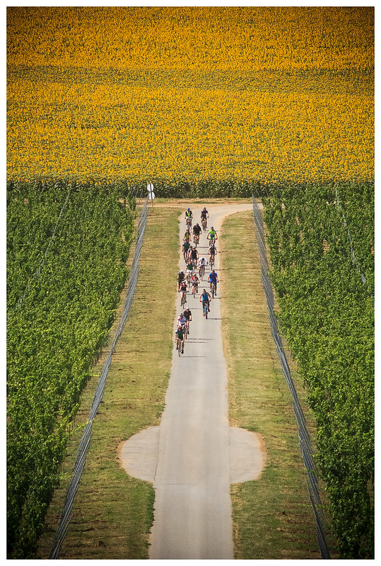 Re: Motiv fotografiranja: Biciklizam 22097927789_cd82c8298f_c