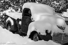 Wintry Truck13