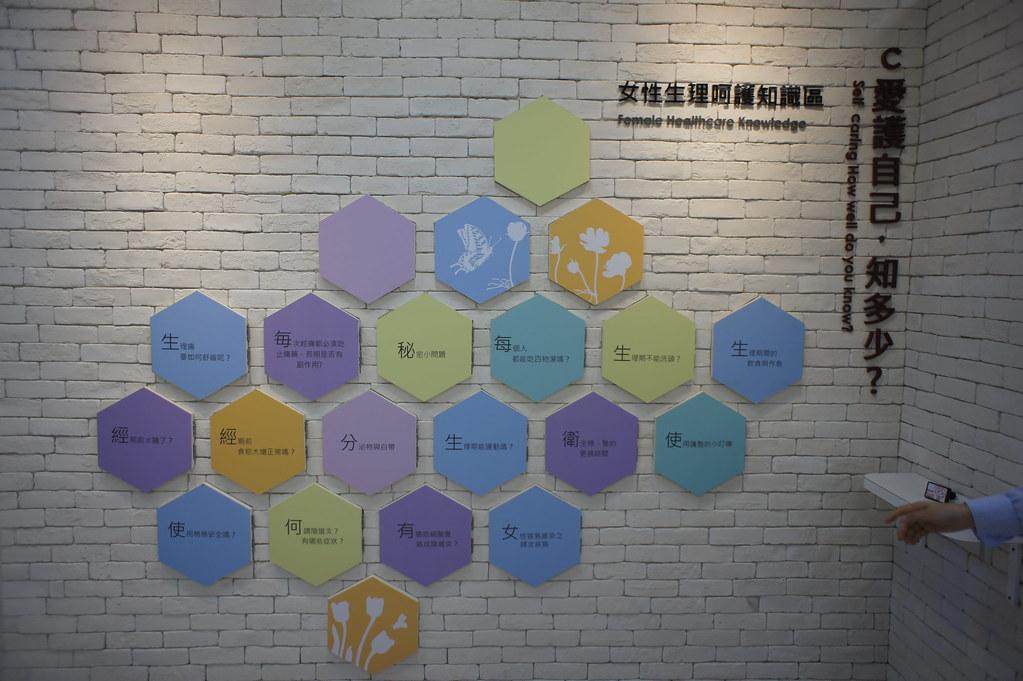 台南市將軍區康那香不織布創意王國 (21)