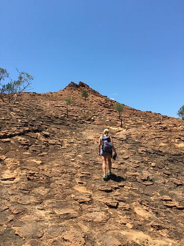 2015-11-17-12-44-12_Outback-0268.jpg