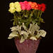 Valentine's Day - Photo Courtesy The Rittners School of Floral Design, Boston