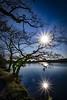 Sunny Reflections