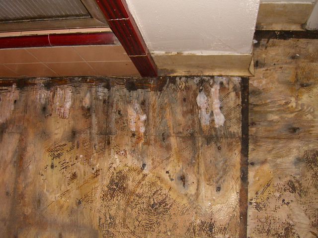 Dry Rot In The Bathroom Flickr Photo Sharing