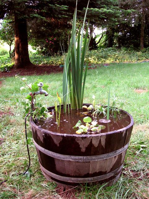 My Whiskey Barrel Pond Flickr Photo Sharing