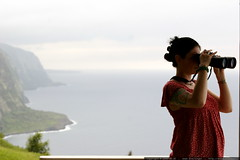 waipi'o valley lookout   coastline and binoculars   …