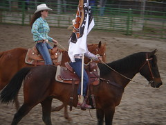 animal sports, rodeo, equestrianism, western riding, equestrian sport, rein, sports, western pleasure, charreada, halter, bridle, reining,