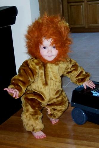 It's a SCARY LION!!!!!!!!
