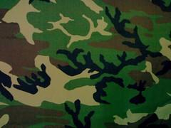 flower(0.0), leaf(0.0), plant(0.0), pattern(1.0), military camouflage(1.0), green(1.0), design(1.0), camouflage(1.0),