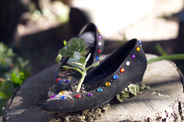 garden of shoes