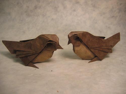 Paper Sparrow 1 Photos   Sparrows   609