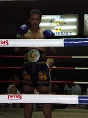 striking combat sports, boxing ring, professional boxing, individual sports, contact sport, sports, combat sport, muay thai, shoot boxing, sanshou, boxing,