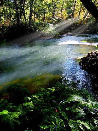 river skookumchuck experiencewa ccxx