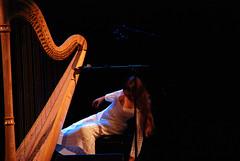 string instrument, musician, music, harp, performance, performance art, string instrument,