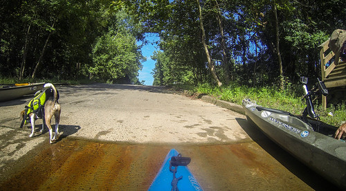 Savannah River Paddling-155