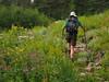 Strawberry Mountain Wilderness by walkdanceswim