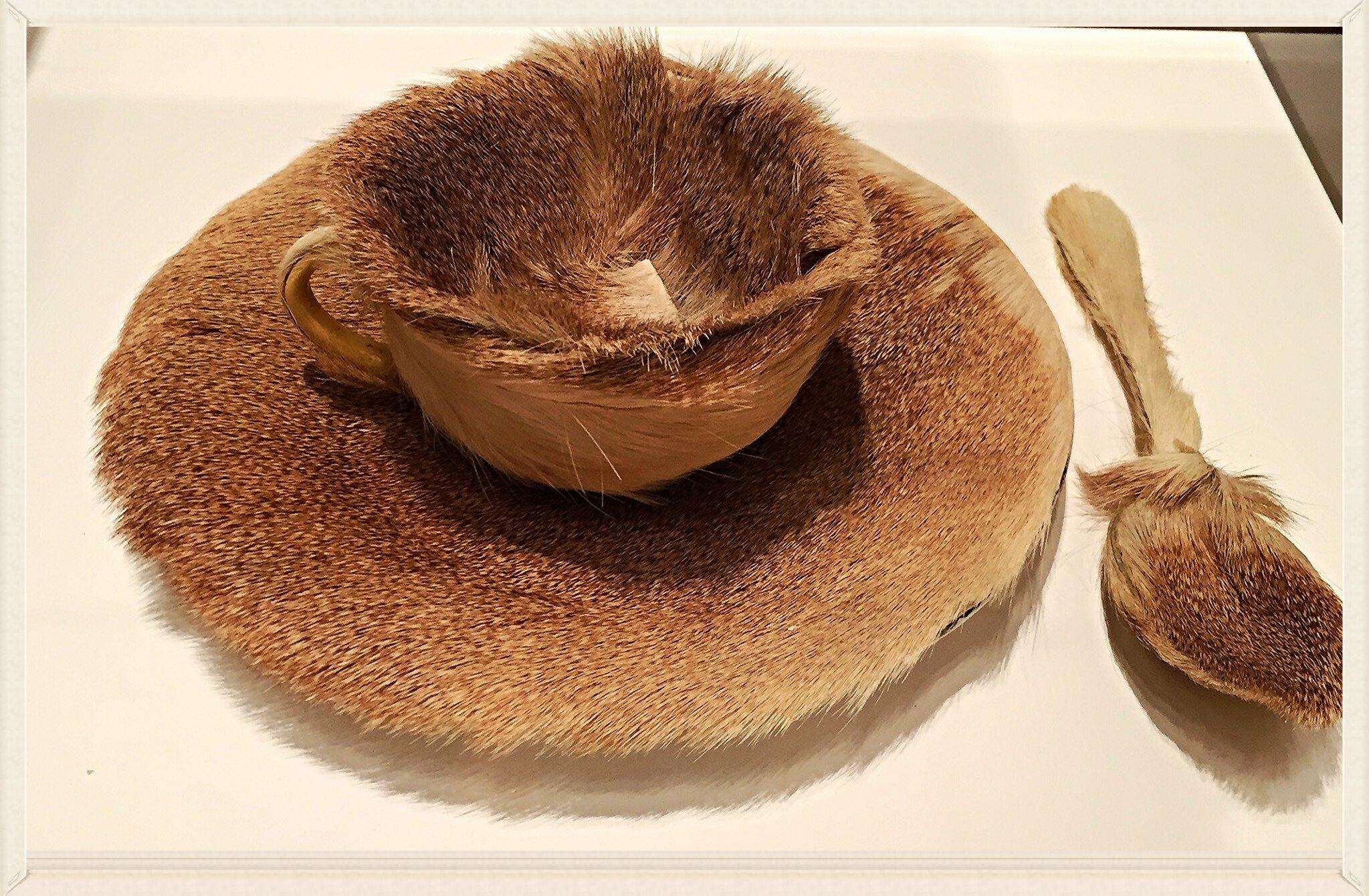 Furry teacup