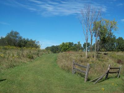 citw_grass_trail