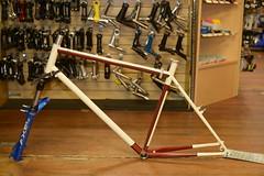 """17"""" Mt Bike repainted $125"""