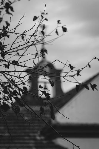 Autor: cuiti78