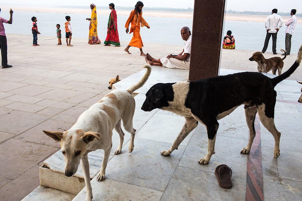 Ghat scene - Varanasi, India