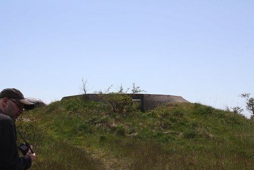 Bolærne fort (154)