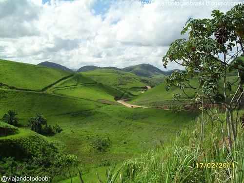 Joaquim Gomes - Vegetação típica da região