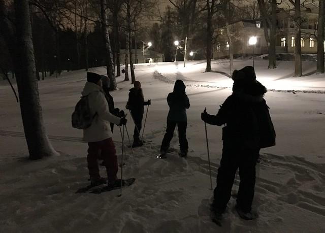 Lahti winter Finland 2017 19