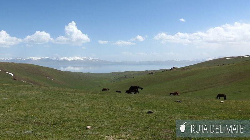 Lago Song-Kol Kirguistán (12)