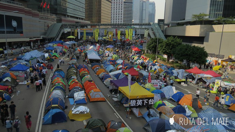 Umbrella Movement Hong Kong (10)