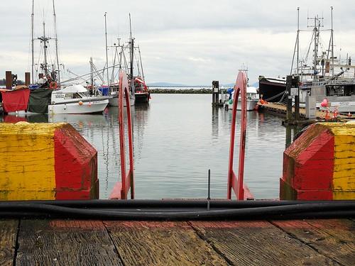 stevestonbccanadafishfishingseafoodboats oceannaturemanmadeindustrislangleofview pacificcolorfulpier marinacommercialfishingfleet fraserrivercommercialfishing