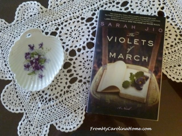 Violets of March 4