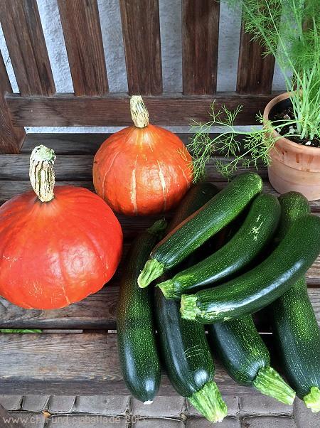 Kürbisse und Zucchini