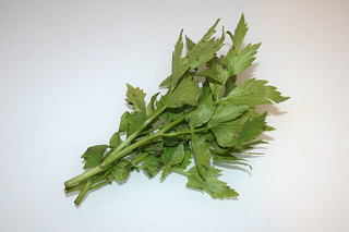 03 - Zutat Liebstöckel / Ingredient lovage